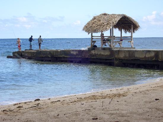 sandy point beach club tobago reviews