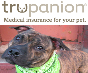 trupanion pet insurance reviews canada