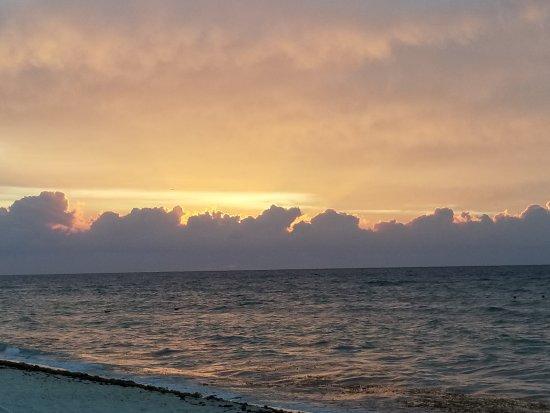 ocean riviera paradise reviews tripadvisor