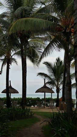 tropical attitude hotel mauritius reviews